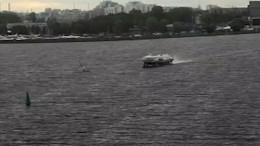 Как погиб прославленный серфер под «Метеором» вПетербурге— трагические кадры