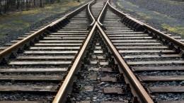Четыре пассажирских вагона поезда «Новосибирск— Владивосток» сошли срельсов