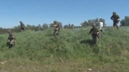 Видео: «Крылатая пехота» провела учения сбоевой стрельбой вЯрославской области
