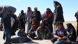 Российский центр попримирению сторон продолжает поставлять гумпомощь вСирию
