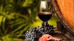 Отлозы добутылки: «российскими» смогут называться вина, полностью произведенные вРФ