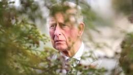 «Запасной наследник»: Принц Чарльз был недоволен, когда унего родился сын Гарри