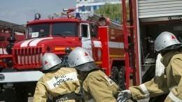 Пожар вСвердловской области унес жизни трех человек