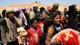 Возвращение кмирной жизни: Лагерь Харджилла вСирии принял беженцев изИдлиба