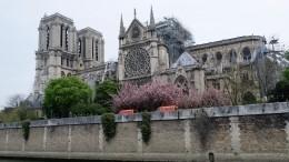 Всоборе Парижской Богоматери проходит первая после пожара месса— видео
