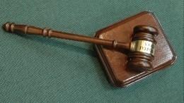Продлен срок задержания сына хоккеиста Максима Соколова, подозреваемого вубийстве матери