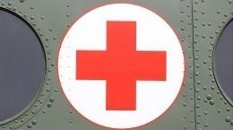 Эстонский Красный крест выступил против «Доктора Айболита»