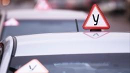 Видео: МВД призвало провести ревизию Правил дорожного движения
