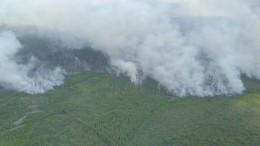 Лесной пожар бушует наплощади 80 гектаров вПодмосковье— фото ивидео