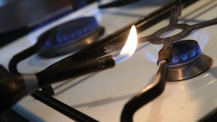 Вукраинской компании рассказали окритическом дефиците газа