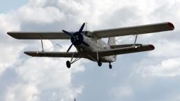 Самолет Ан-2 разбился наУкраине