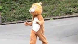 «Странные гомосапиенсы»: Видео учений вяпонском зоопарке наслучай побега льва