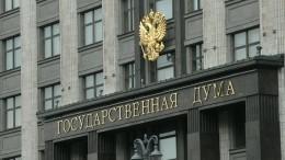 «Акогда были старые?»— вГосдуме оценили слова Климкина о«новой волне давления»