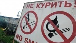 Версия о«курящих журналистах» вделе опожаре взаповеднике «Туколонь» неподтвердилась