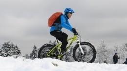 «Адская гора»: Массовое падение велосипедистов вАльпах попало навидео