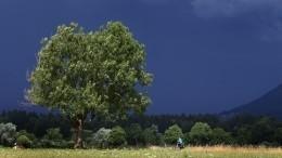 Синоптики обещают россиянам виюле осеннюю погоду