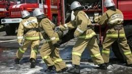 Трое детей погибли впожаре под Новосибирском