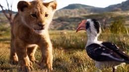 Во«Вконтакте» опубликовали фрагмент фильма «Король Лев»