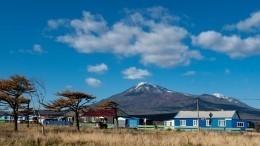 Стала известна позиция РФопередаче Японии двух островов Южных Курил