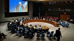 ВСовбезе ООН призвали Украину соблюдать права нацменьшинств