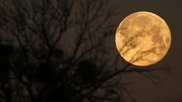 Видео: Какое оно совпавшее сполнолунием последнее лунное затмение 2019 года