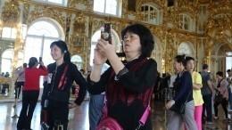 Электронные визы для туристов введут вПетербурге иЛенобласти