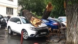 Упавшее из-за ураганного ветра дерево вМоскве повредило пять машин игазовую трубу