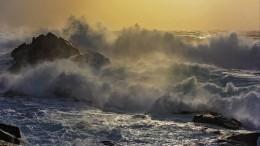 ВПриморье ученых пришлось спасать стерпящего бедствие катера