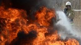 Природные пожары бушуют вОренбургской области: введен режим ЧС