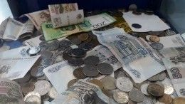 Петербургские профессора опровергли слух обаснословной зарплате