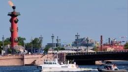Путин принимает Главный военно-морской парад вСанкт-Петербурге