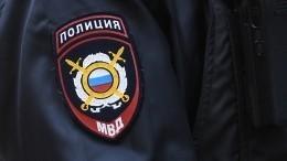 Подростки задержаны поподозрению вубийстве двух женщин вПодмосковье