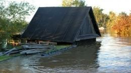 Видео: Уровень воды вреке ИявТулуне превысил критический