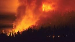 «Положение сложное»: Глава правительства провел совещание поситуации слесными пожарами