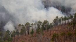 Уголовное дело охалатности возбуждено вКрасноярском крае из-за лесных пожаров
