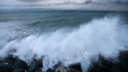 Две чемпионки мира покикбоксингу утонули вовремя шторма вСевастополе