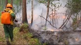 Региональные власти искажали статистику полесным пожарам— Генпрокуратура