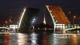 Петербург остается лидером среди городов РФпочислу психических заболеваний