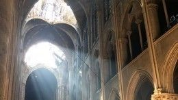 Жителя ХМАО пригласили восстанавливать собор Парижской Богоматери