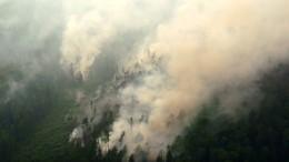 Дым отлесных пожаров провоцирует заболевания, эксперт рассказал какие именно