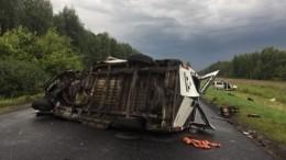 Пять человек погибли вжутком ДТП вТамбовской области