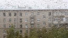 Град вСамаре, полчища насекомых вБлаговещенске: Россию атакуют погодные аномалии