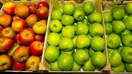 «Неликвид»: почему российским яблокам невытеснить импортные