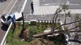 ВЯпонии десять человек пострадали из-за тайфуна «Кроса»