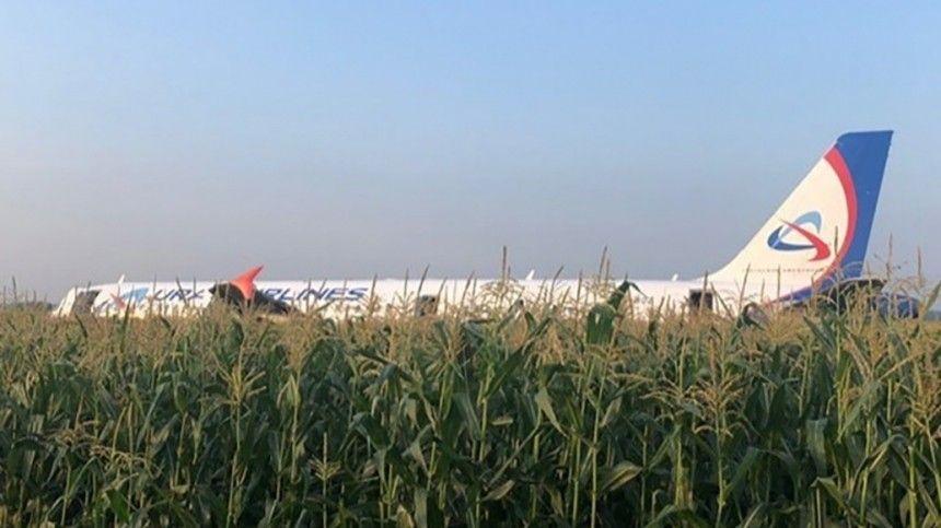 «Сложнее чуда наГудзоне»— эксперт обаварийной посадке самолета А-321