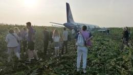 Пассажиры рейса «Москва— Симферополь» получат по100 тысяч рублей