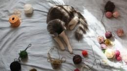 Любителям кошек ивязания— лайфхак, чтобы непутались клубки ниток