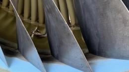 Фото: рейс изМинвод вМоскву задержан из-за попадания птицы вдвигатель