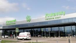 Видео: Аэропорт «Жуковский» ранее жаловался напривлекающие птиц свалки