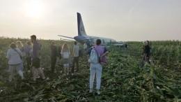 Пассажирка севшего вполе A-321 намерена судиться из-за травли винтернете
